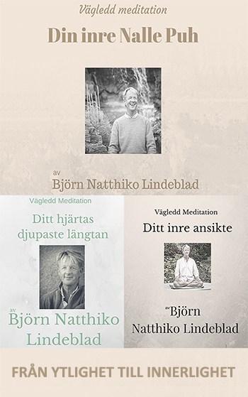 Från ytlighet till innerlighet, Beskrivning av Från ytlighet till innerlighet, Björn Natthiko Lindeblad